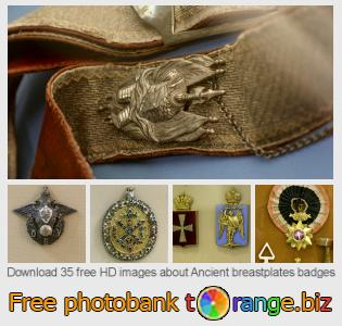 Image bank tOrange offers free photos from the section:  ancient-breastplates-badges