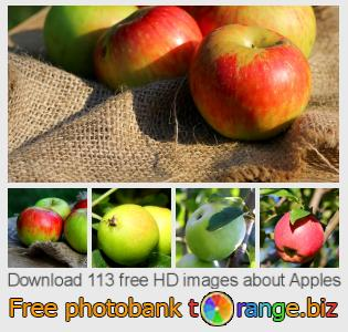 images free photo bank tOrange offers free photos from the section:  apples