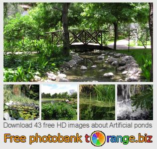 images free photo bank tOrange offers free photos from the section:  artificial-ponds