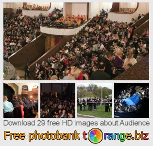 images free photo bank tOrange offers free photos from the section:  audience