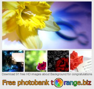 Image bank tOrange offers free photos from the section:  background-congratulations