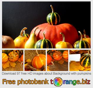 images free photo bank tOrange offers free photos from the section:  background-pumpkins