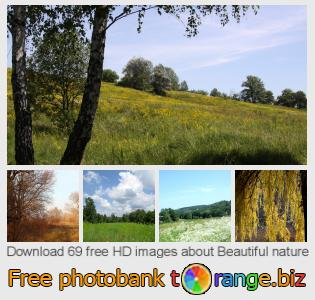 Image bank tOrange offers free photos from the section:  beautiful-nature