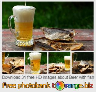 images free photo bank tOrange offers free photos from the section:  beer-fish