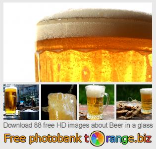images free photo bank tOrange offers free photos from the section:  beer-glass