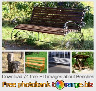 images free photo bank tOrange offers free photos from the section:  benches