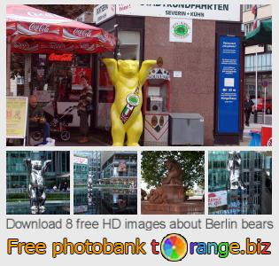 Image bank tOrange offers free photos from the section:  berlin-bears