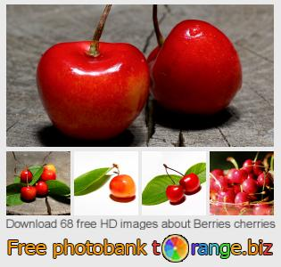 images free photo bank tOrange offers free photos from the section:  berries-cherries