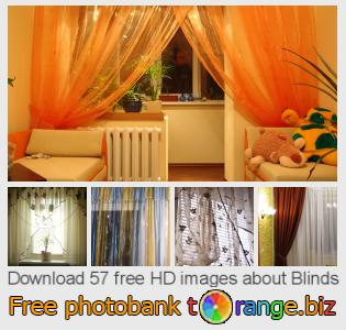 images free photo bank tOrange offers free photos from the section:  blinds