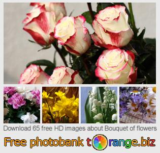 Image bank tOrange offers free photos from the section:  bouquet-flowers