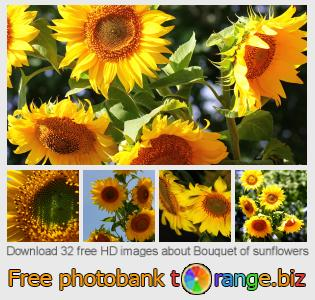 Image bank tOrange offers free photos from the section:  bouquet-sunflowers