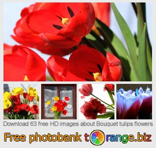 images free photo bank tOrange offers free photos from the section:  bouquet-tulips-flowers