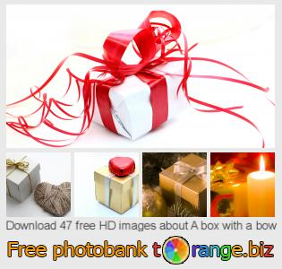 Image bank tOrange offers free photos from the section:  box-bow