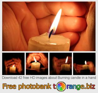 Image bank tOrange offers free photos from the section:  burning-candle-hand