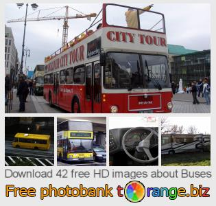 Image bank tOrange offers free photos from the section:  buses