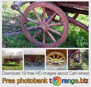 images free photo bank tOrange offers free photos from the section:  cart-wheel