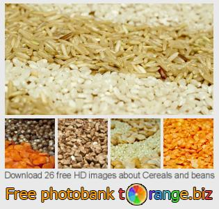 images free photo bank tOrange offers free photos from the section:  cereals-beans