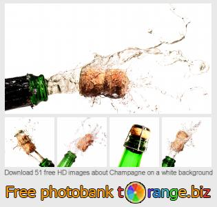 images free photo bank tOrange offers free photos from the section:  champagne-white-background