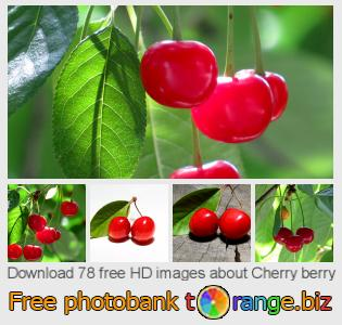images free photo bank tOrange offers free photos from the section:  cherry-berry