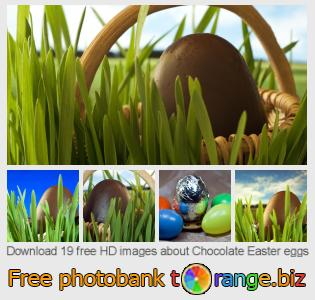 Image bank tOrange offers free photos from the section:  chocolate-easter-eggs