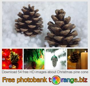 images free photo bank tOrange offers free photos from the section:  christmas-pine-cone