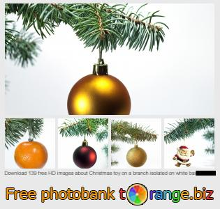 images free photo bank tOrange offers free photos from the section:  christmas-toy-branch-isolated-white-background