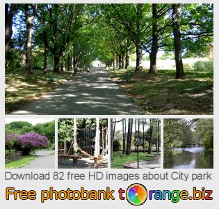 Image bank tOrange offers free photos from the section:  city-park