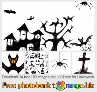 Image bank tOrange offers free photos from the section:  clipart-halloween