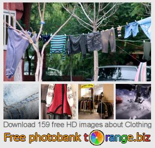 Image bank tOrange offers free photos from the section:  clothing