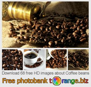 images free photo bank tOrange offers free photos from the section:  coffee-beans