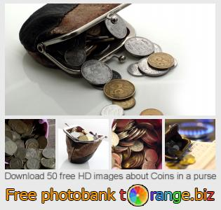 images free photo bank tOrange offers free photos from the section:  coins-purse