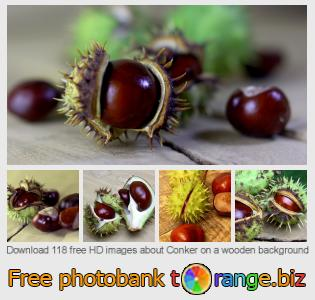 images free photo bank tOrange offers free photos from the section:  conker-wooden-background