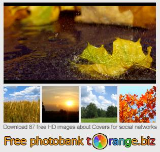 images free photo bank tOrange offers free photos from the section:  covers-social-networks