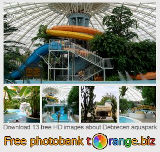 images free photo bank tOrange offers free photos from the section:  debrecen-aquapark