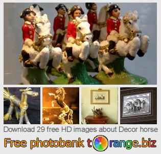 Image bank tOrange offers free photos from the section:  decor-horse