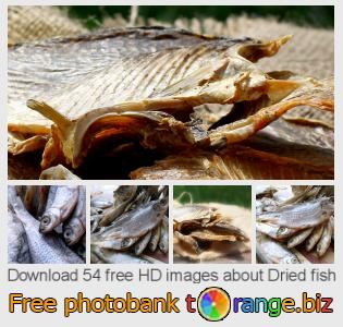 images free photo bank tOrange offers free photos from the section:  dried-fish