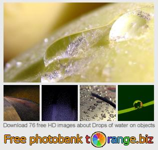 Image bank tOrange offers free photos from the section:  drops-water-objects