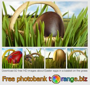 Image bank tOrange offers free photos from the section:  easter-eggs-basket-grass