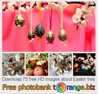 Image bank tOrange offers free photos from the section:  easter-tree