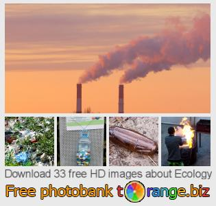 images free photo bank tOrange offers free photos from the section:  ecology