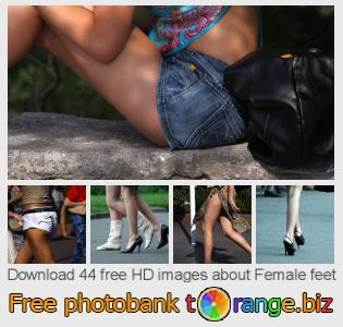 images free photo bank tOrange offers free photos from the section:  female-feet