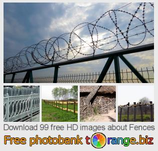 Image bank tOrange offers free photos from the section:  fences