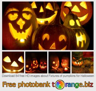 images free photo bank tOrange offers free photos from the section:  fixtures-pumpkins-halloween