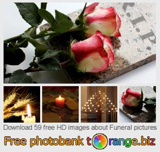 images free photo bank tOrange offers free photos from the section:  funeral-pictures