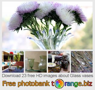 Image bank tOrange offers free photos from the section:  glass-vases