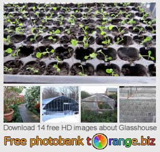 images free photo bank tOrange offers free photos from the section:  glasshouse