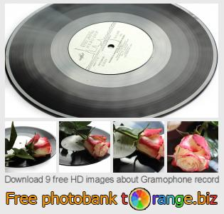 images free photo bank tOrange offers free photos from the section:  gramophone-record