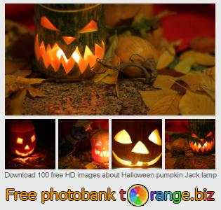 images free photo bank tOrange offers free photos from the section:  halloween-pumpkin-jack-lamp