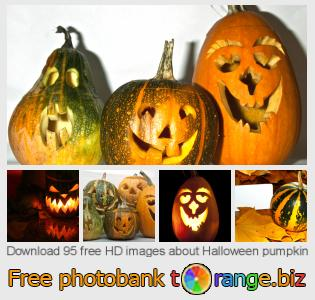 images free photo bank tOrange offers free photos from the section:  halloween-pumpkin