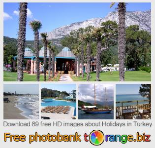 Image bank tOrange offers free photos from the section:  holidays-turkey